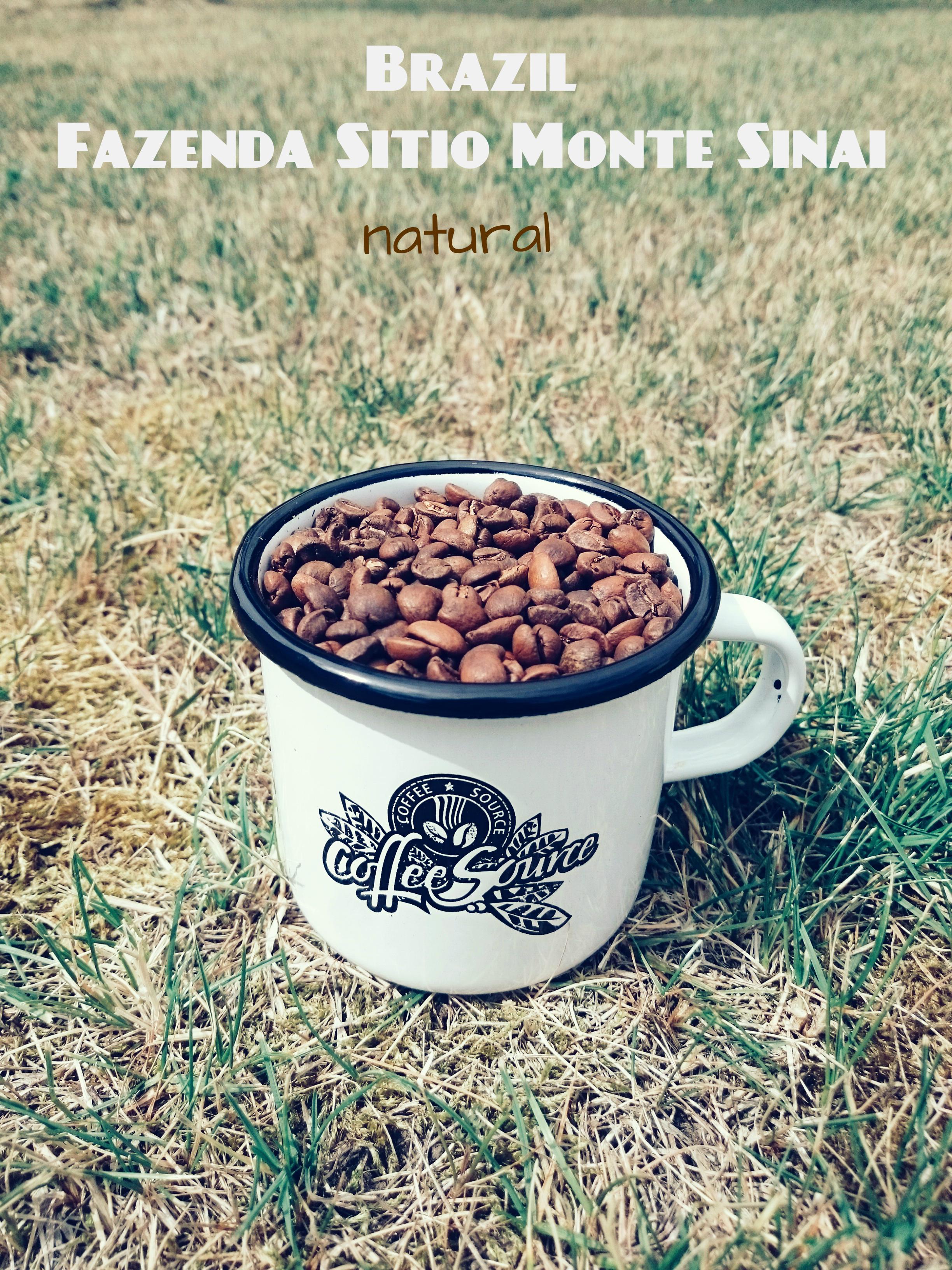 CS mug 183g brazil 4